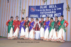 annual day 20`13 271 copy